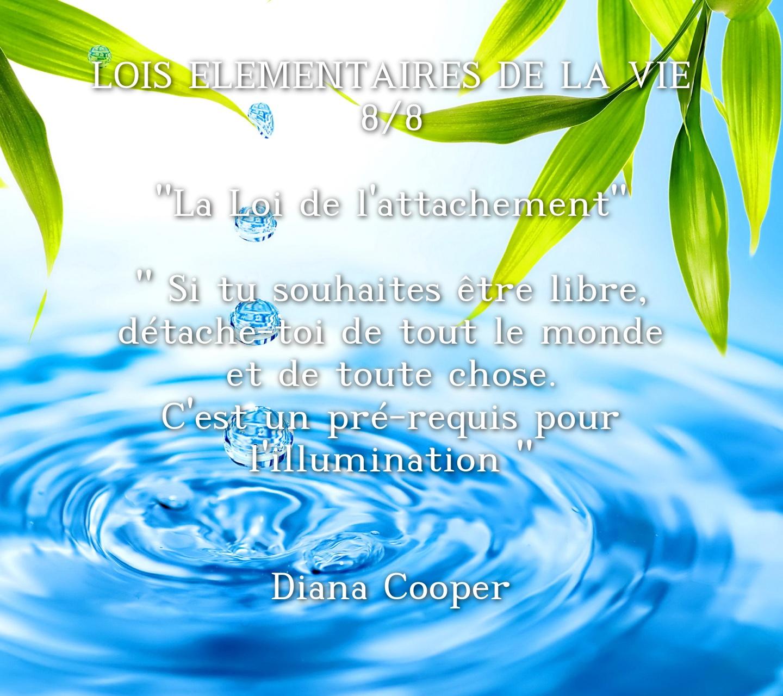 wp-LOIS-ELEMENTAIRES-DE-LA-VIE-8-8-La-Loi-d_1537260020
