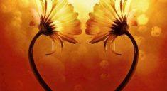 L'Amour peut changer le cours des choses
