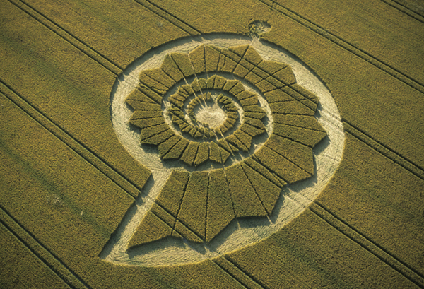 Les Crop Circles par Umberto Molinaro