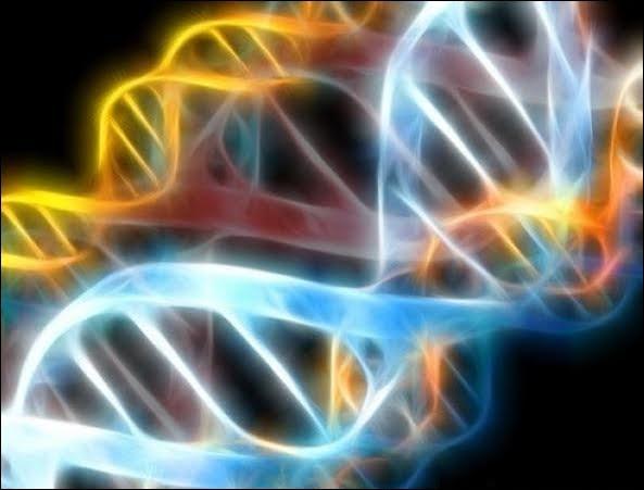 Les 12 couches de l'ADN et CHANGEMENT vibratoire
