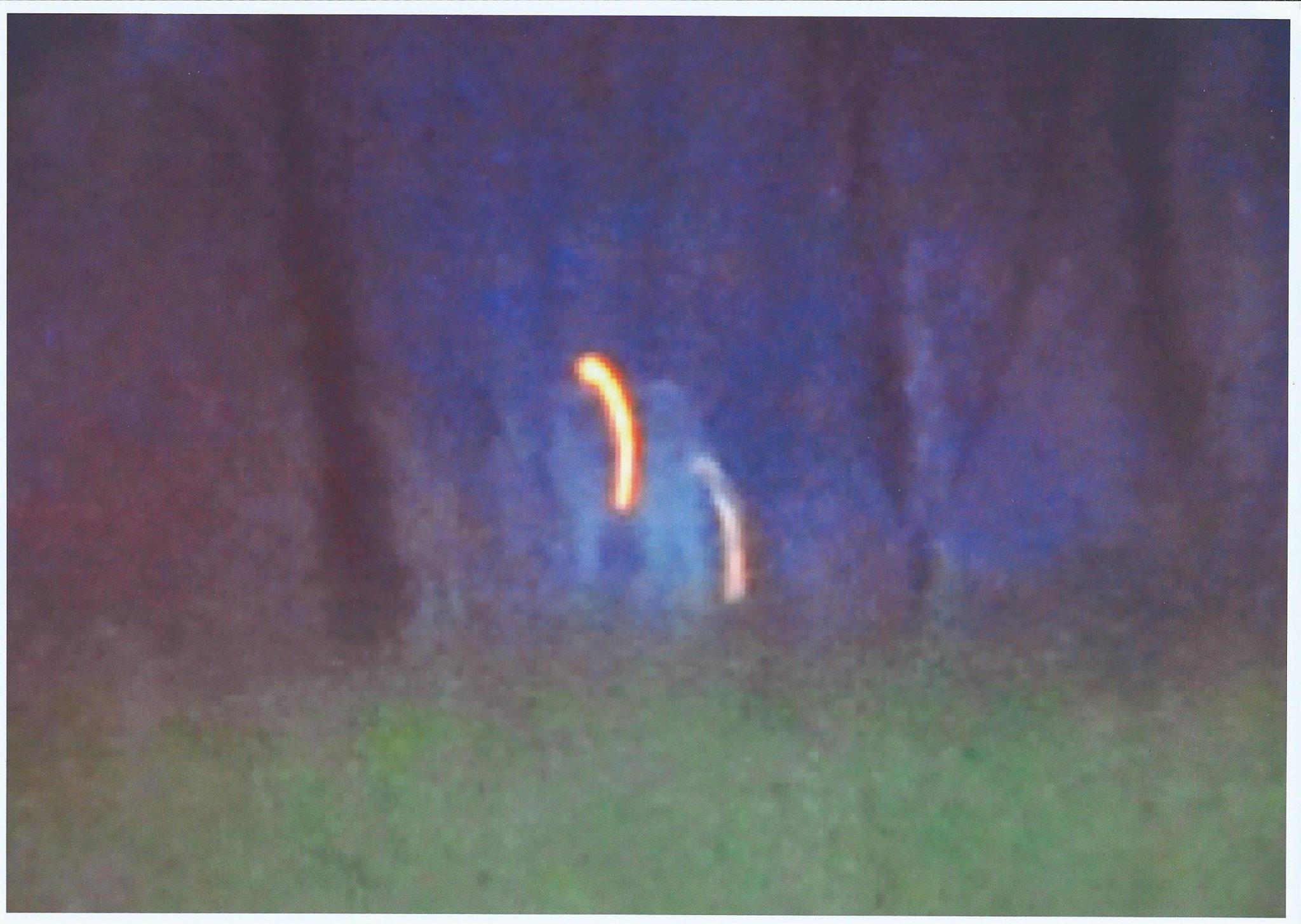 Un extraterrestre Pléiadien se laisse photographier et explique la raison de sa venue sur Terre…