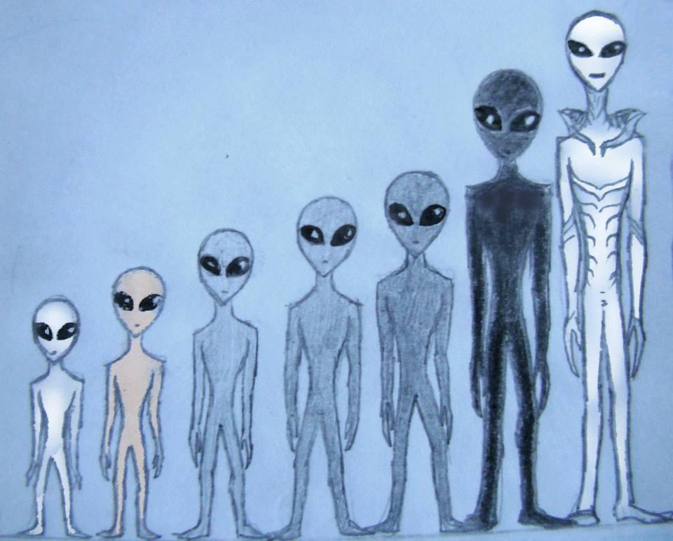 Vidéos: Différents types d'extraterrestres «Gris»