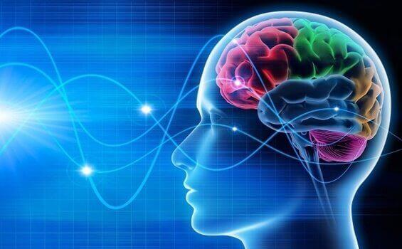 Vers une conscience accrue par les ondes cérébrales