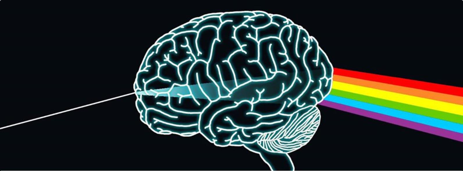 L'Ego survient par la maladie des gènes-conscience