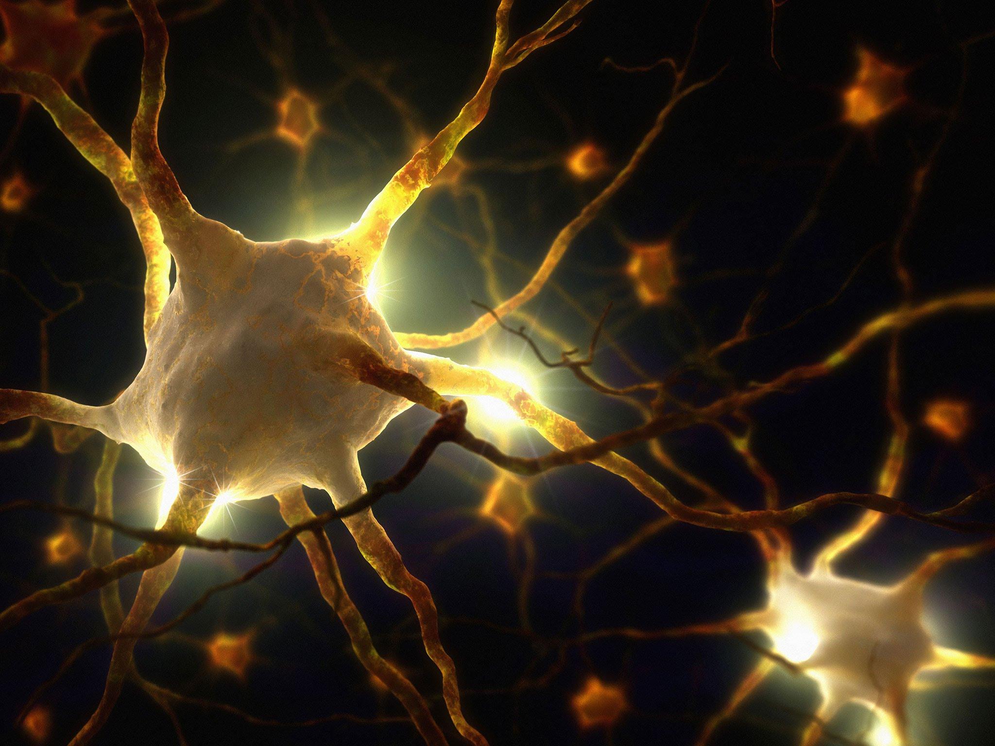 Des scientifiques découvrent des biophotons dans le cerveau qui pourraient laisser entendre que notre conscience est directement liée à la lumière !