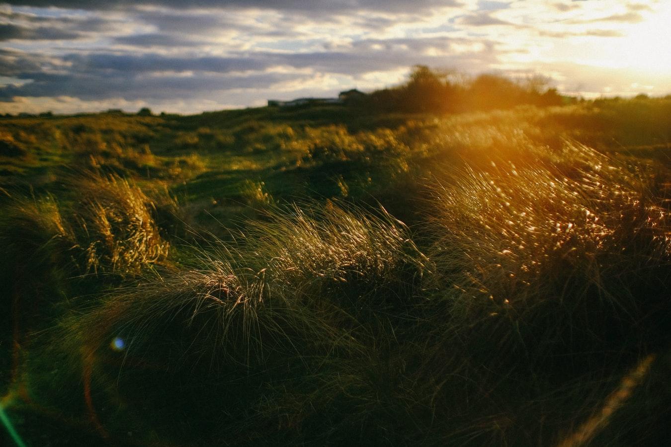 SYLVAIN DIDELOT : Sananda – Vous n'avez personne à convertir, s'il vous plaît