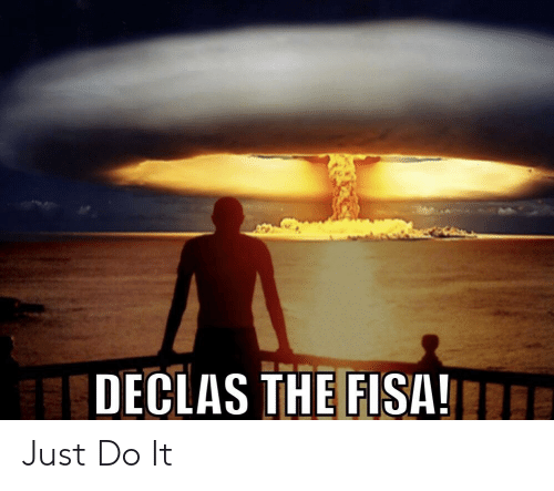 declas-the-fisa-e-just-do-it-45621559.png