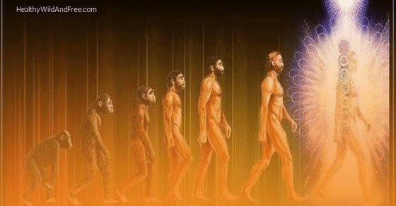 5-signs-youre-an-evolved-human-being-healthy-wild-and-free