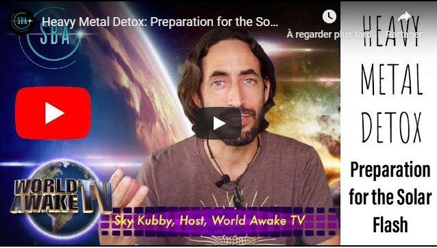 Détoxification des métaux lourds : Préparation pour le flash solaire avec Sky Kubby