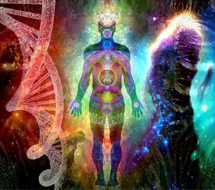 Les cours de Laurent Dureau : l'ADN, sa nature exacte et l'exploration de ses 12 couches multi-dimensionnelles