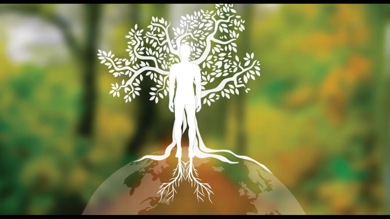Méditation d'Ancrage profond en 30 minutes avec la Terre avec son bi-tonal 432 Hertz !