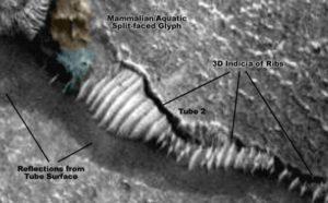 La planète Mars est réellement habitée par des colonies d'esclaves humains