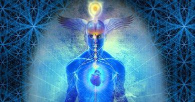 La philosophie des Wingmakers : Souverain Intégral, Univers, Gratitude, Observation de la Source, Nourrir la Vie, Modèle d'existence