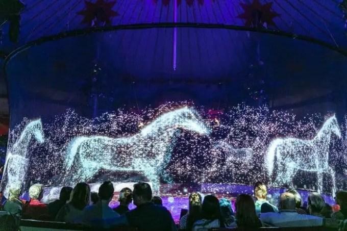 animal-holograms-circus-roncalli-germany-2-5cf652b990d82__700