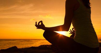 Méditation inédite de connexion aux 7 règnes du vivant pour le renforcement de l'immunité