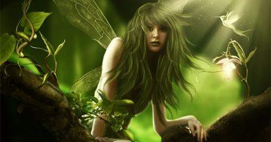 Une fée de la nature se révèle à moi