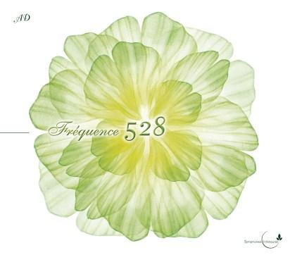 FrC3A9quence-528-face-1