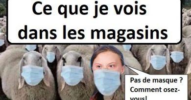 Covid-19 : Les masques et les «gestes barrières» sont inutiles (Prof. Denis Rancourt)