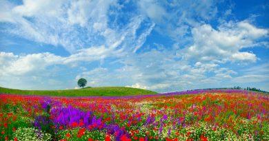 Créer l'ouverture du champs des possibles par sa pensée et sa parole!
