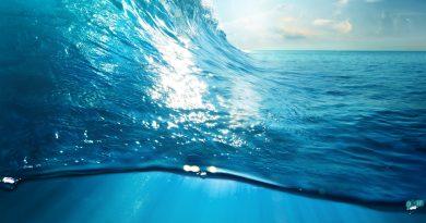 L'eau, passeuse de conscience