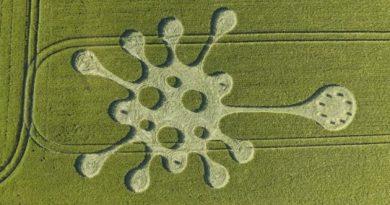 Deux Crop Circles sont apparus récemment en Angleterre: L'un évoque le Coronavirus et le deuxième une horloge !