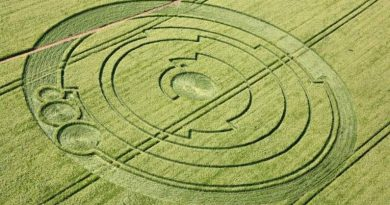 Le point sur les Crop Circles récents