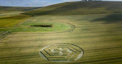 Surprenant nouveau Crop Circle le 7/7/10 à Stanton St Bernard dans le Wiltshire
