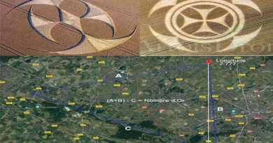Crop Circle : Alignement 2020 par Umberto Molinaro !